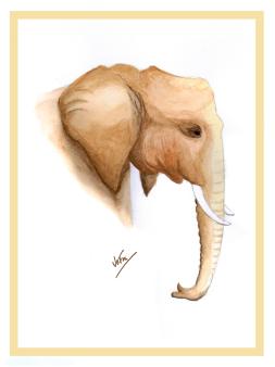 elephant_FIN_WEB