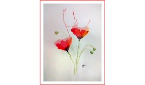poppies_fin_feature