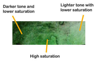 Saturation and tone diagram
