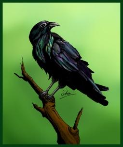Crow COL FIN_WEB