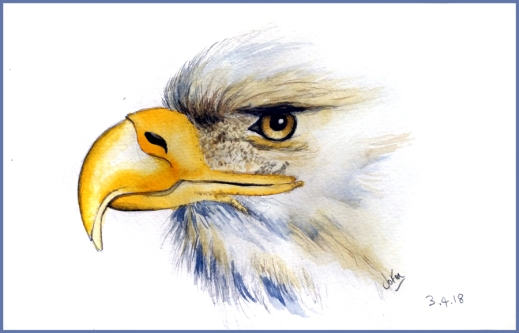 Eagle painting fin web