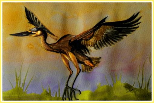 Heron FIN Web Border