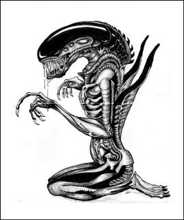 Alien_FIN_WEB