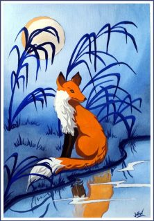 6Fox Reflection_FIN_WEB