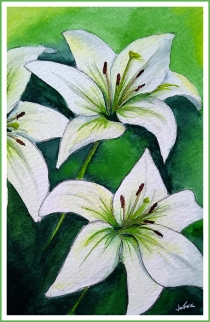 Lillies 2_FIN_WEB